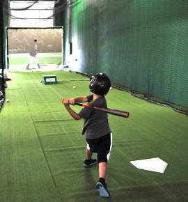 Training Simulators for Batting Practice